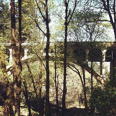 Apple Wall Art - Photograph - Bridge Over Lake Oswego Creek by Anna Porter