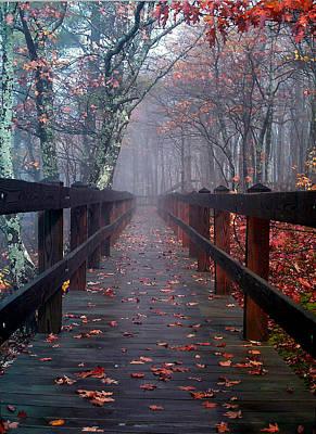 Bridge To Mist Woods Art Print