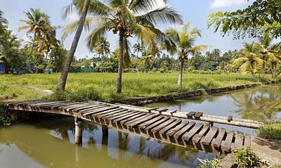 Rickety Bridge Photograph - Bridge To Paddy by Kantilal Patel