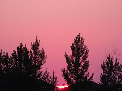 Bright Pink Sunset Original by Brian  Maloney