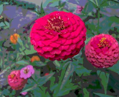 Bright Red Zinnia Flower Art Print by Padre Art