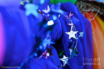 Photograph - Bright Star by Susan Herber