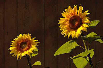 Art Print featuring the photograph Bright Sunflower Pair by Nancy De Flon