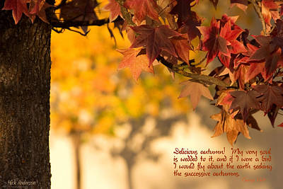Firefighter Patents Royalty Free Images - Brilliant Autumn Color Royalty-Free Image by Mick Anderson