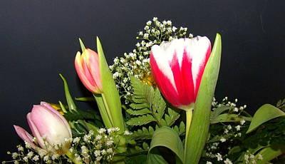Photograph - Brilliant Flowers by Jose Lopez