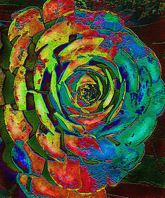 Digital Art - Brilliant Succulent by Jane Schnetlage