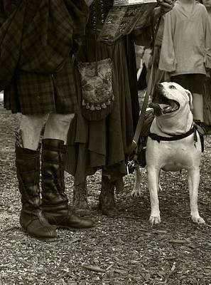 Photograph - British Bulldog by Scott Hovind
