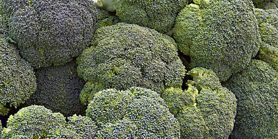 Broccoli Art Print by Forest Alan Lee