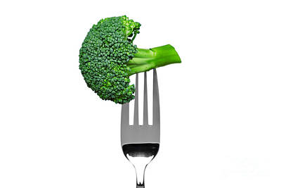 Broccoli On A Fork Isolated On White Art Print by Richard Thomas