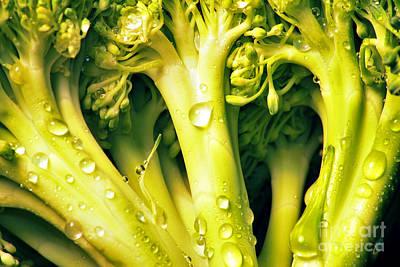 Broccoli Scape I Art Print by Nancy Mueller