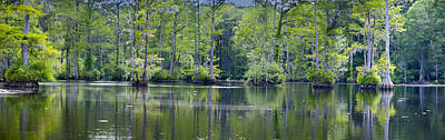Photograph - Brock Mill Pond by Rob Hemphill