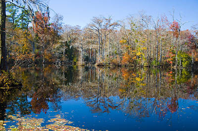 Photograph - Brock Millpond 1 by Rob Hemphill