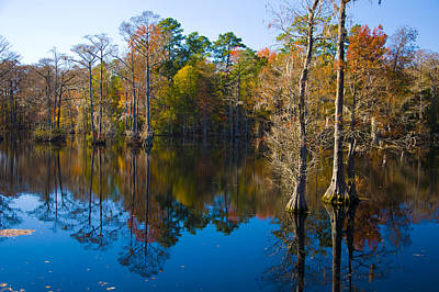 Photograph - Brock Millpond 2 by Rob Hemphill