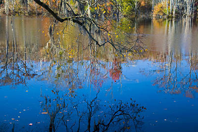 Photograph - Brock Millpond 3 by Rob Hemphill