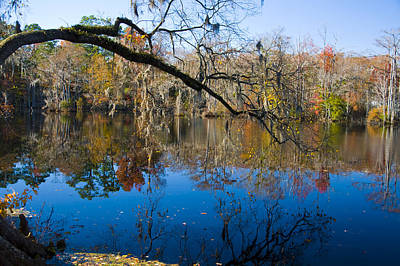 Photograph - Brock Millpond 4 by Rob Hemphill