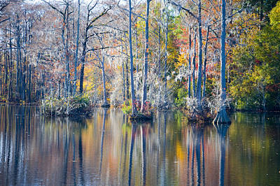 Photograph - Brock Millpond 5 by Rob Hemphill
