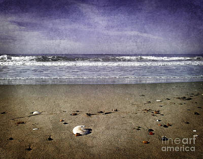 Lavender Digital Art - Broken Shell At Twilight by Laura Iverson