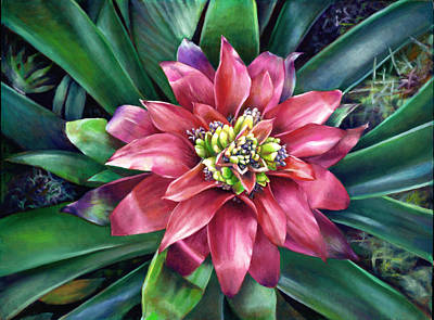 Painting - Bromeliad by Nancy Tilles
