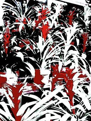Bromeliads Cu 4 Art Print