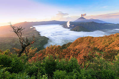 Jawa Photograph - Bromo High View Indonesia by Fadil Basymeleh