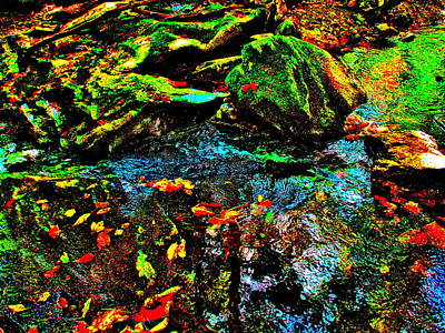 Photograph - Brook Texture 126 by George Ramos