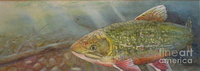 Animals Paintings - Brooke Trout by Mohamed Hirji