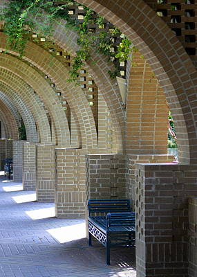 Photograph - Brookgreen Arches by Sandi Blood