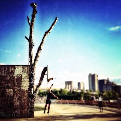 Basketball Photograph - Brooklyn Hoopin' by Natasha Marco