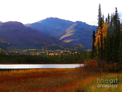 Photograph - Brooks Range Pond by Adam Owen