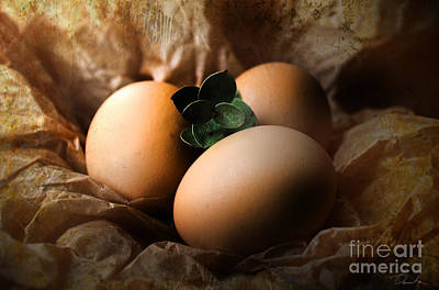 Photograph - Brown Easter Eggs by Danuta Bennett