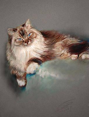Browny White Art Print by Ylli Haruni