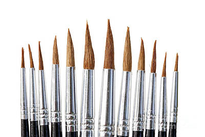 Photograph - Brushes by Michal Boubin