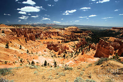 Photograph - Bryce Canyon Amphitheater by Adam Jewell