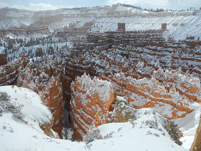 Photograph - Bryce Canyon Feburary  by Stephen Bartholomew