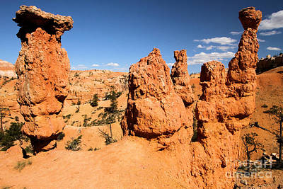 Photograph - Bryce Canyon Hoodoos by Adam Jewell