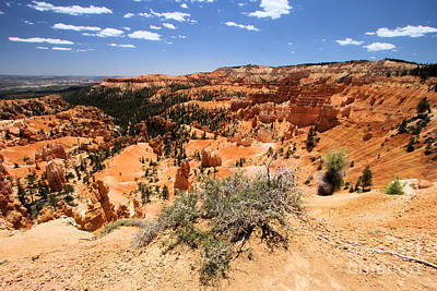 Photograph - Bryce Canyon Overlook by Adam Jewell