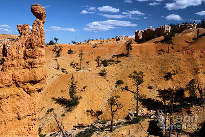 Photograph - Bryce Guardians by Adam Jewell