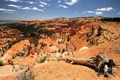 Photograph - Bryce Overlook by Adam Jewell