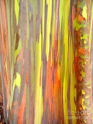 Photograph - Bubble-gum Tree by KD Johnson