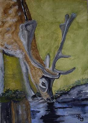 Buck At Bushy Park Art Print