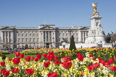 Buckingham Palace Photograph - Buckingham Palace In The Spring Time by Andrew  Michael