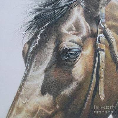 Buckles And Belts In Colored Pencil Art Print by Carrie L Lewis