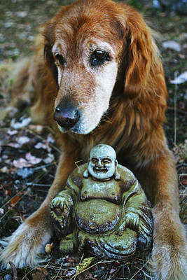 Photograph - Buddha And The Old Boy by Lorraine Devon Wilke