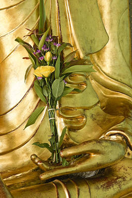 Photograph - Buddha Hand Holding Flower by Michele Burgess