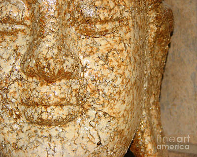 Photograph - Buddha by Traci Cottingham