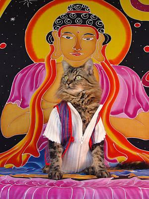 Photograph - Buddhapuss by Joann Biondi