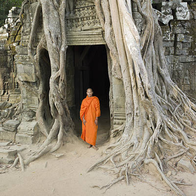 Buddhist Monk Standing Next To Tree Roots Art Print by Martin Puddy