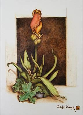 Pyrography Pyrography - Budding Iris by Cynthia Adams