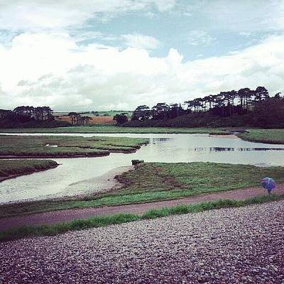 Marsh Photograph - Budleigh by Dave Harris