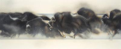 Buffalo In Winter Print by Douglas Fincham